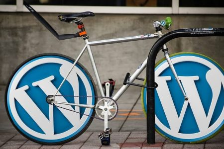How to Start A Self-Hosted WordPress Blog in India [The Non-Technical Guide]